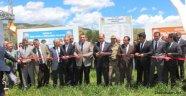 Taşova Dörtyol Köyü Merası Açıldı